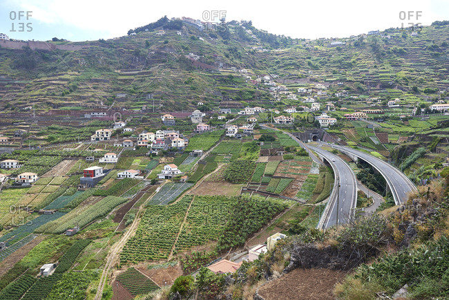 A view over lush steep valley with terraced fields and roads running through it in Madeira, Portugal