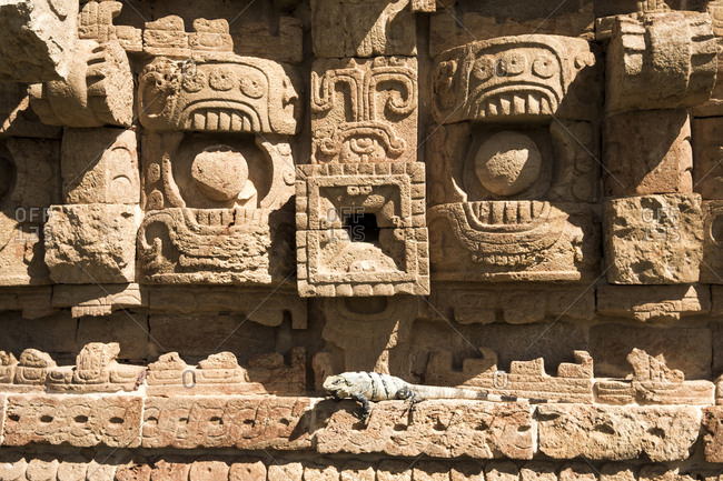 Kabah, Yucatan, Mexico - October 13, 2017: Iguana on stonework at the Mayan archaeological site of Kabah on the Puuc route in the state of Yucatan in Mexico