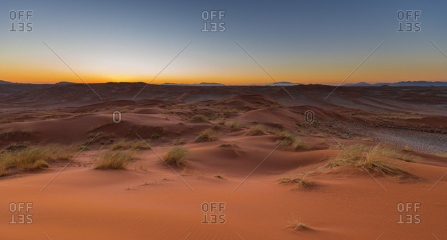 The red oxidized sand of the Namib sand dunes