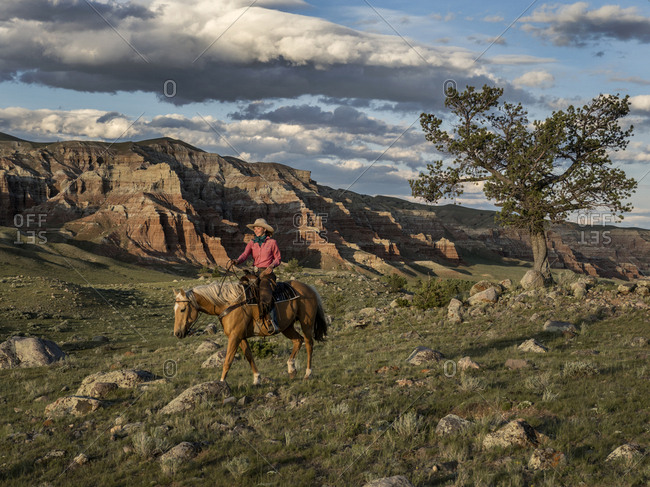 A female wrangler on  horse in late afternoon