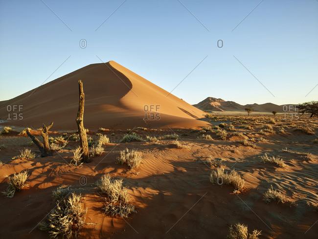 Africa- Namibia- Namib-Naukluft National Park- Namib desert- desert dunes