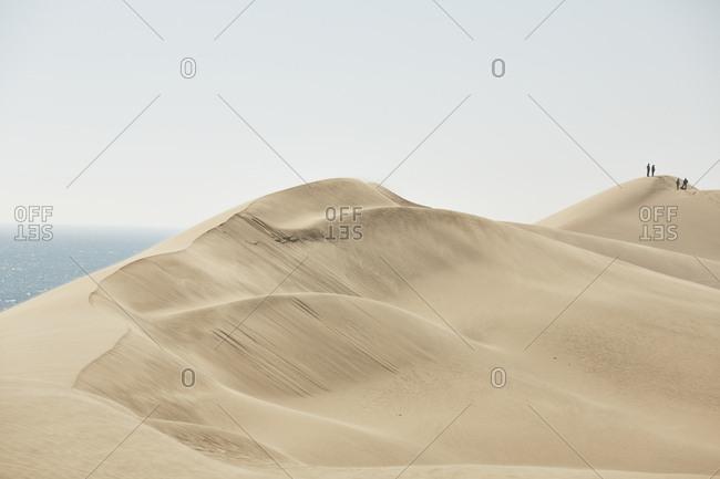 Africa- Namibia- Namib-Naukluft National Park- Namib desert- desert dunes and atlantic