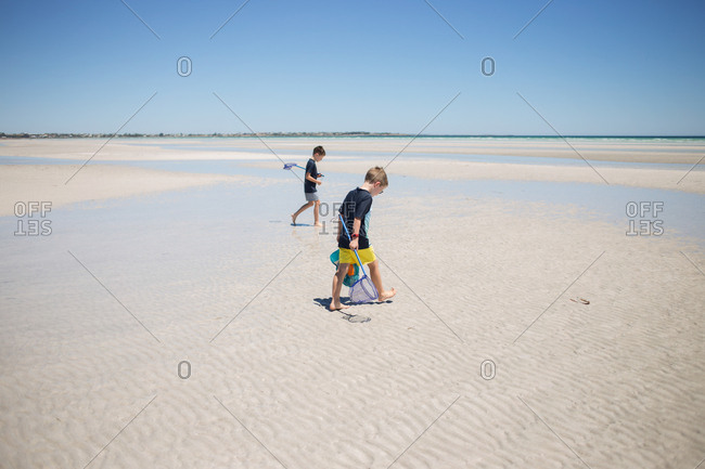 Two boys with nets walking on a sandy beach