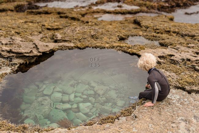 Boy looking into rock pool on Hawke's Bay, New Zealand