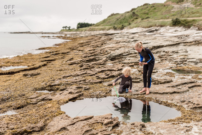 Two kids looking for starfish on a beach