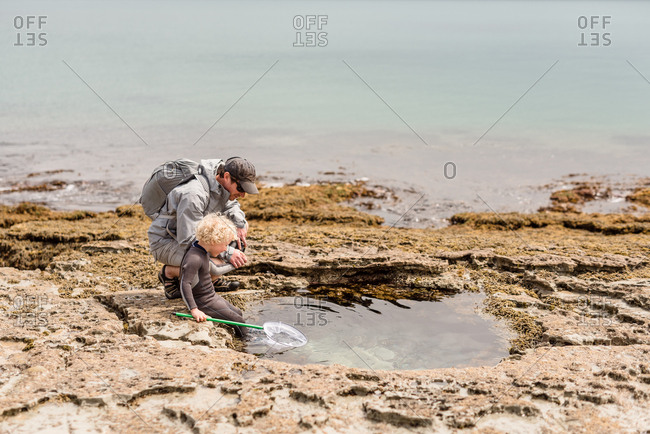 Boy looking into rock pool with his dad on Hawke's Bay, New Zealand