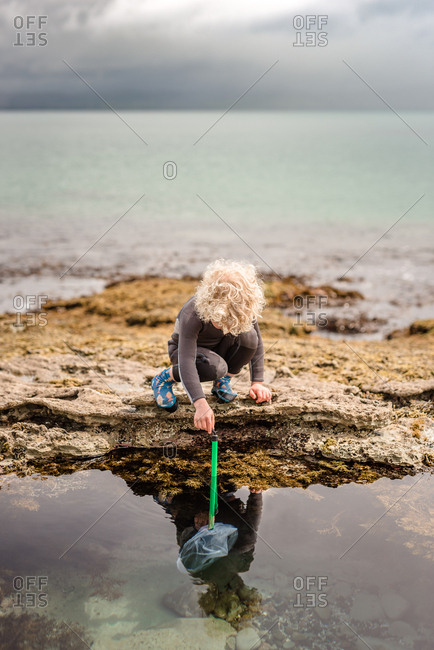 Boy exploring rock pools on Hawke's Bay, New Zealand
