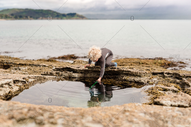 Boy using net in a rock pool on Hawke's Bay, New Zealand