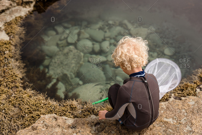 Boy looking into tide pool on Hawke's Bay, New Zealand