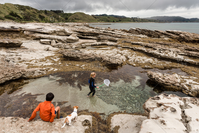 Kids exploring a tide pool on Hawke's Bay, New Zealand