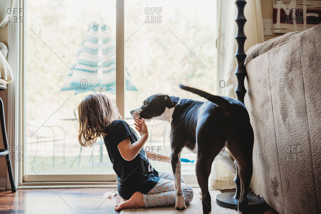Little girl backing away from big lick from pet dog