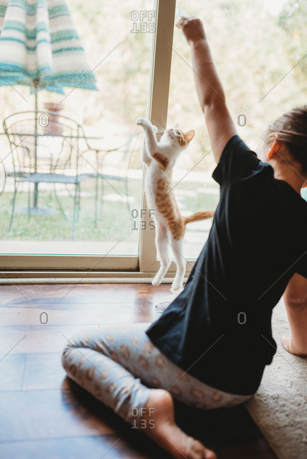 Kitten leaping at full stretch trying to catch hand of little girl