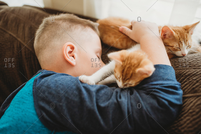 Young boy taking nap on couch with his kittens