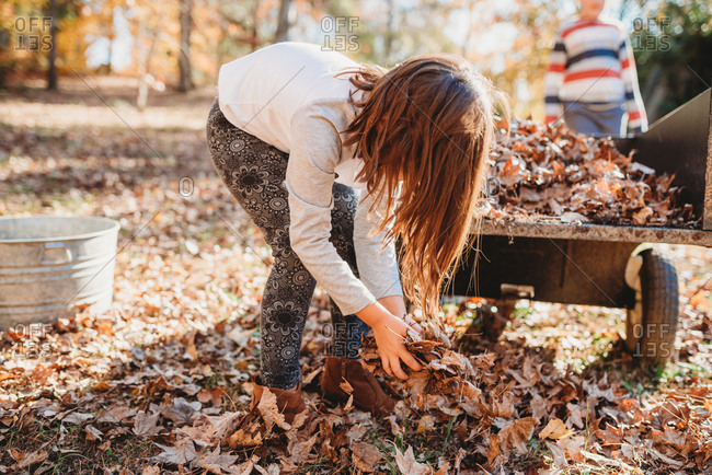 Young girl bending over to scoop up handful of leaves on crisp Fall day