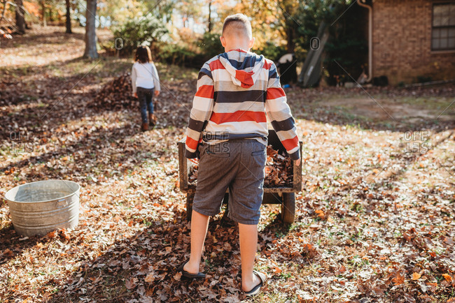 Rearview of young boy checking cart full of fallen leaves in backyard