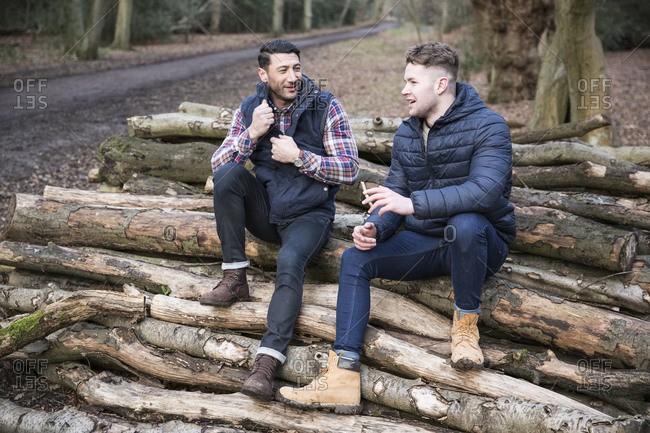 Male friends talking while sitting on logs at Epping Forest