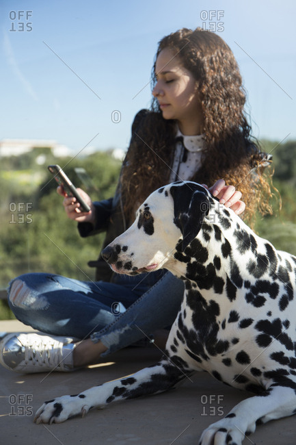 Woman using mobile phone while sitting by Dalmatian at park