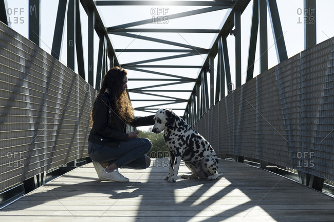 Side view of woman petting Dalmatian while crouching on footbridge