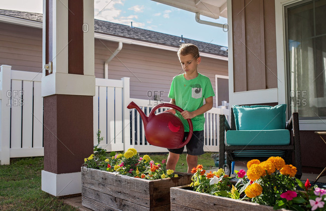 Young boy watering a flower box