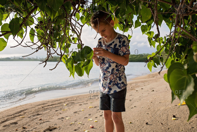 Boy exploring a beach