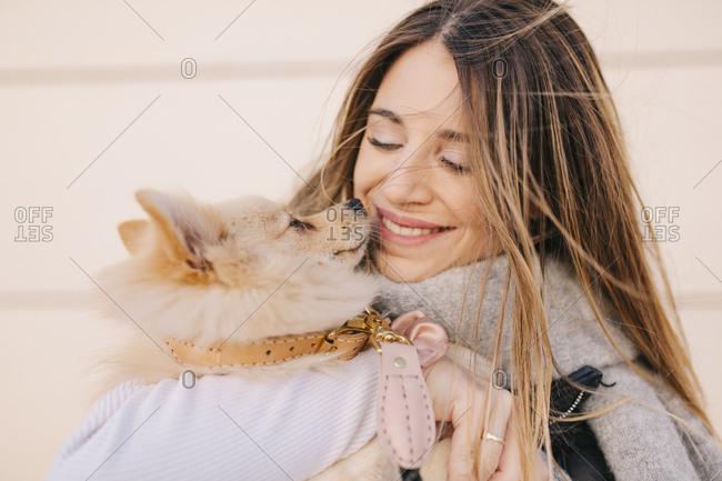 Tiny dog nuzzling female owner's face
