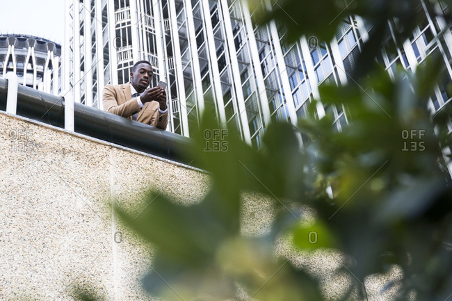 View through tree leaves of young black Madrid businessman standing above with cell phone