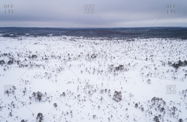 Aerial view of nordic landscapes covered with snow, Estonia