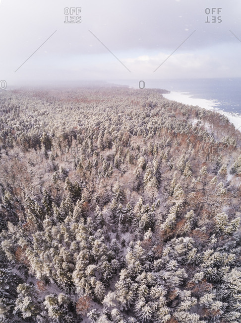 Aerial view of the snowy colorful forest on the coast of Muraste, Estonia