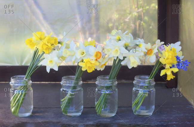 Daffodils for sale at a roadside stand
