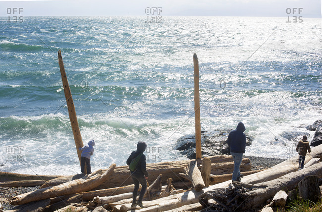 People walking on large driftwood logs along rocky coast