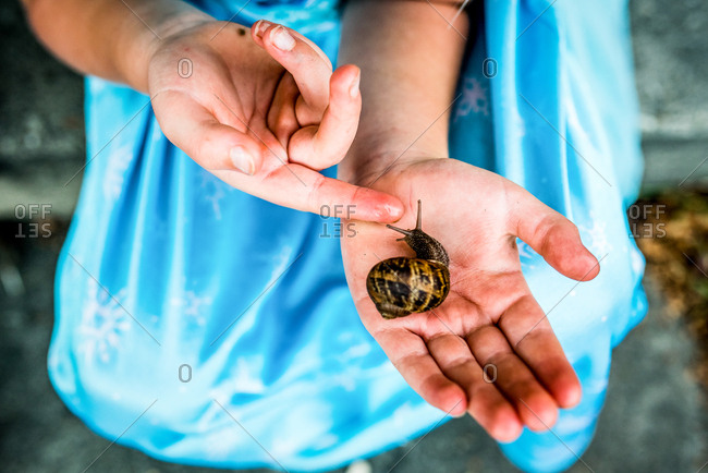 Child's hands holding slimy snail