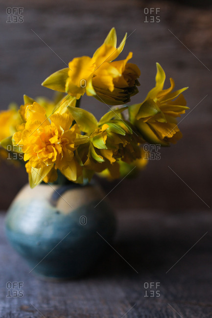 Close up of yellow flowers in a blue vase