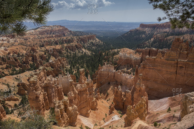 Looking out over the hoodoos of  Bryce Canyon National Park, Utah, USA