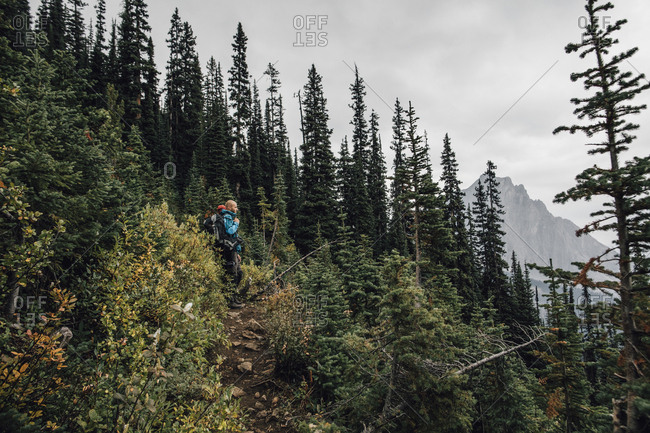 Canada- British Columbia- Yoho National Park- hikers on trail at Mount Burgess
