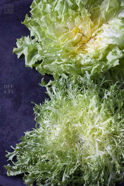 Endive and curled endive salad