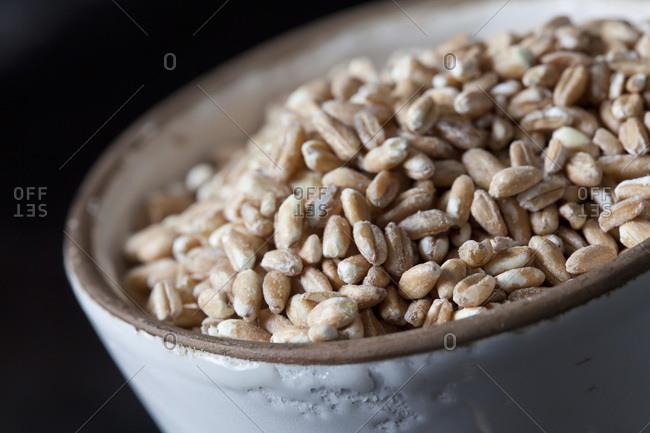 Bowl of spelt grains- close-up
