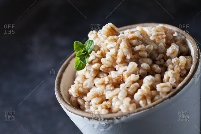 Bowl of cooked spelt grains- close-up
