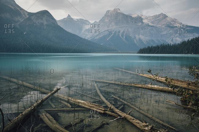 Canada- British Columbia- Columbia-Shuswap A- Emerald Lake Trail- Michael Peak-  Yoho National Park- Rocky Mountain