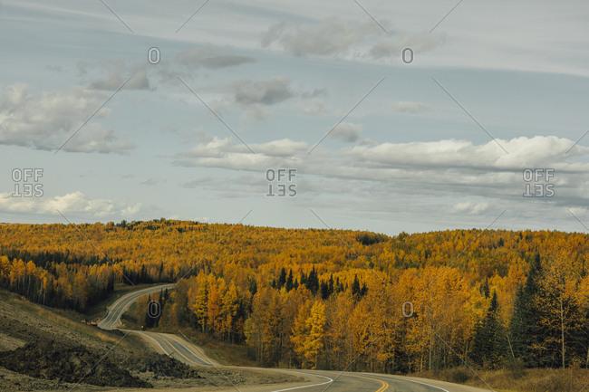 Canada- British Columbia- Northern Rockies- Alaska Highway in autumn