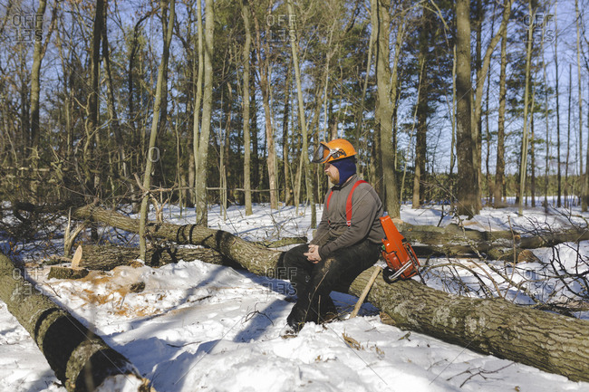 Lumberjack sitting on logs in forest during winter