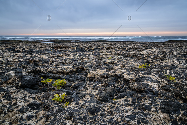 View of rocks on shore against cloudy sky