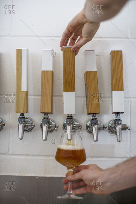 Vancouver, Canada - July 04, 2017: Close up of barman pouring a beer from one tap of many at a craft beer brewery