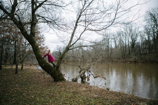 Adolescent girl climbing mossy tree by river bank