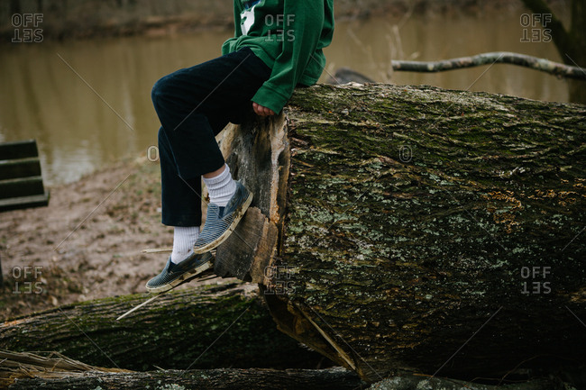 Lower view of kid sitting on large fallen tree log by river