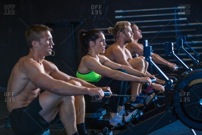 Group of people exercising in gymnasium, using rowing machines