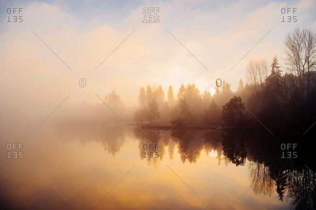 Reflection of trees in water at sunset, Bainbridge, Washington, United States