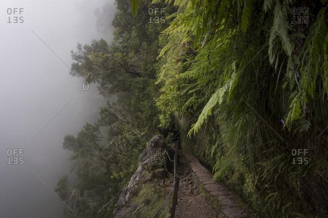 Narrow fenced off walkway along Levada of Caldeirao Verde