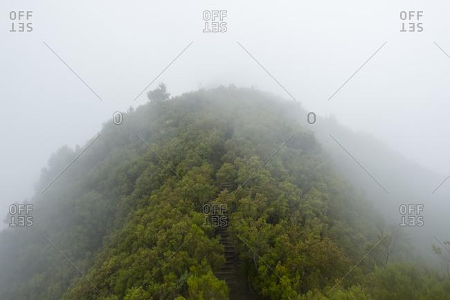 Misty hillside steps along Pinaculo and Folhadal trek
