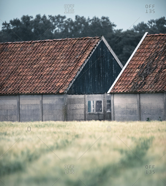 Vintage barns in countryside with cloudy sky.