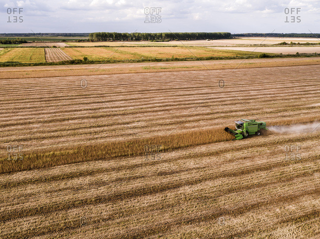 Serbia- Vojvodina- Combine harvester on a wheat- aerial view